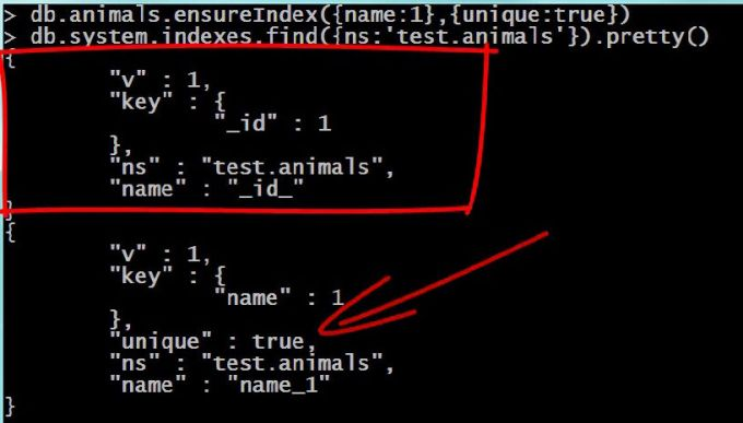 MongoDB creating unique Index